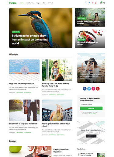 Purosa-Magazine-eCommerce-Elementor-WordPress-Theme-Preview-front