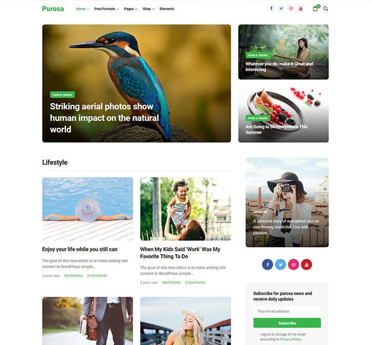 Purosa-Magazine-eCommerce-Elementor-WordPress-Theme_preview