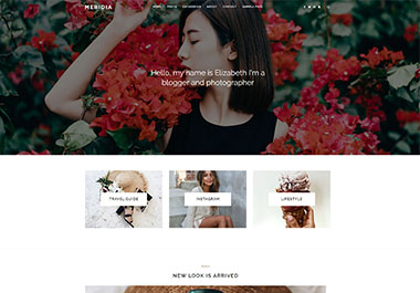 meridia_wordpress_gallery_2