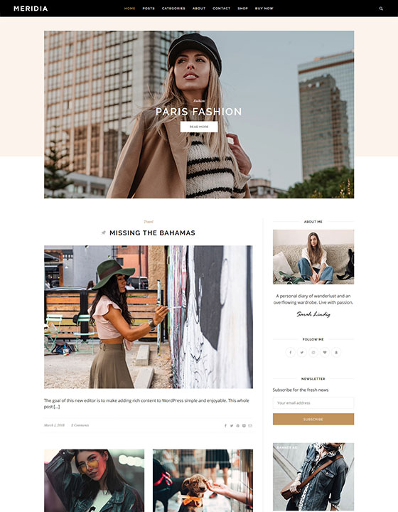 meridia_free_wordpress_blogging_theme_preview