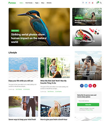 Purosa-Free-Magazine-WordPress-Theme_preview