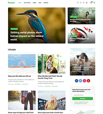 Purosa-Free-Magazine-WordPress-Theme_preview