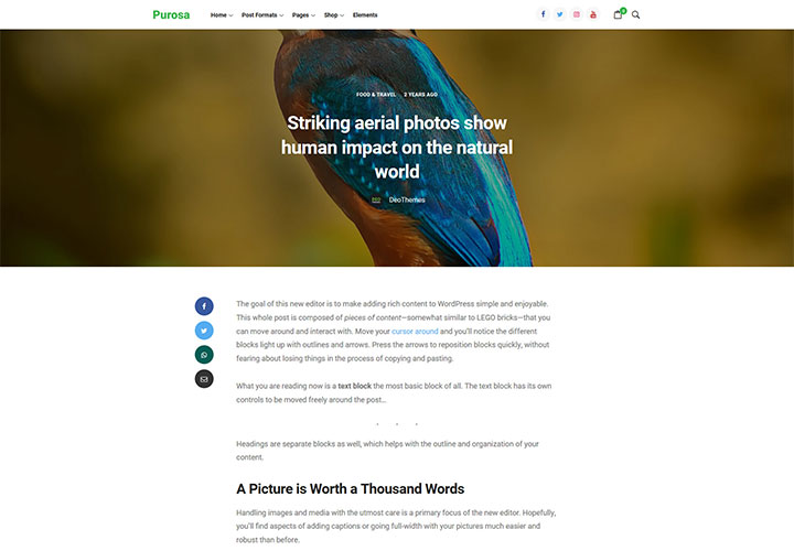 purosa_wordpress_theme_gallery_1