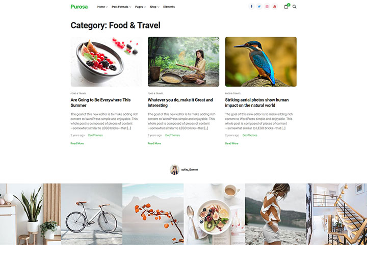 purosa_wordpress_theme_gallery_3